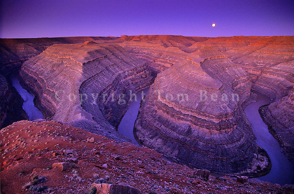 Goosenecks of the San Juan River with entrenched stream meanders at dawn with full moon, BLM public lands near Mexican Hat, Utah, AGPix_0052.