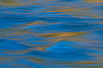 American River Abstract