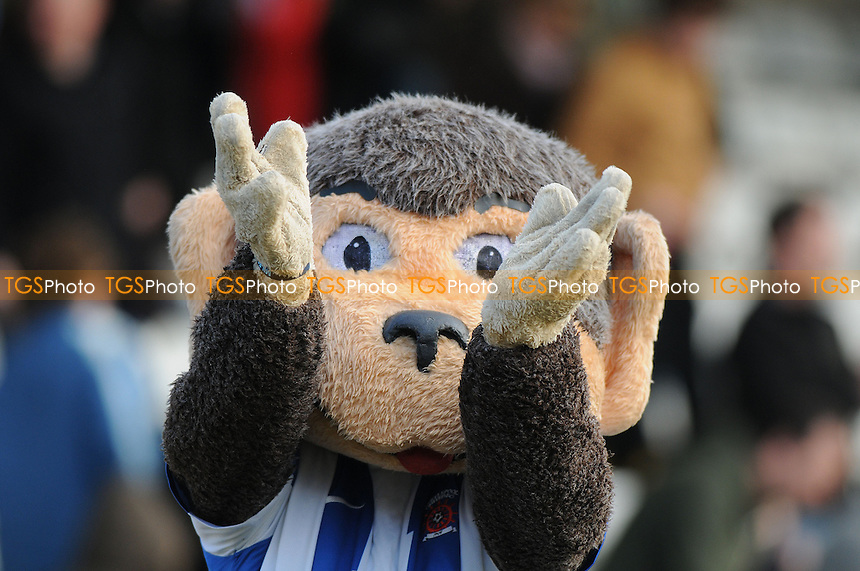 Hartlepool United mascot Hangus celebrates at the final whistle - Hartlepool United vs Bury- NPower League One Football at Victoria Park, Hartlepool - 06/04/13 - MANDATORY CREDIT: Steven White/TGSPHOTO - Self billing applies where appropriate - 0845 094 6026 - contact@tgsphoto.co.uk - NO UNPAID USE.