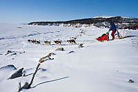 Middie Johnson crosses the road and runs onto the sea ice as he leaves the Elim checkpoint during the 2010 Iditarod