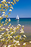Sail boat in Marquette Harbor in early June.
