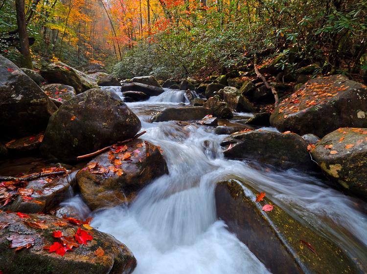Cascades splash down Jacob Fork near Shinney Creek in the South Mountains State Park, North Carolina, USA