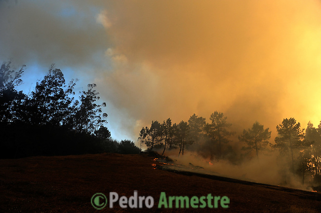 the fire area in Porqueira, on August 14, 2010, near A Coruña. (c) Pedro ARMESTRE