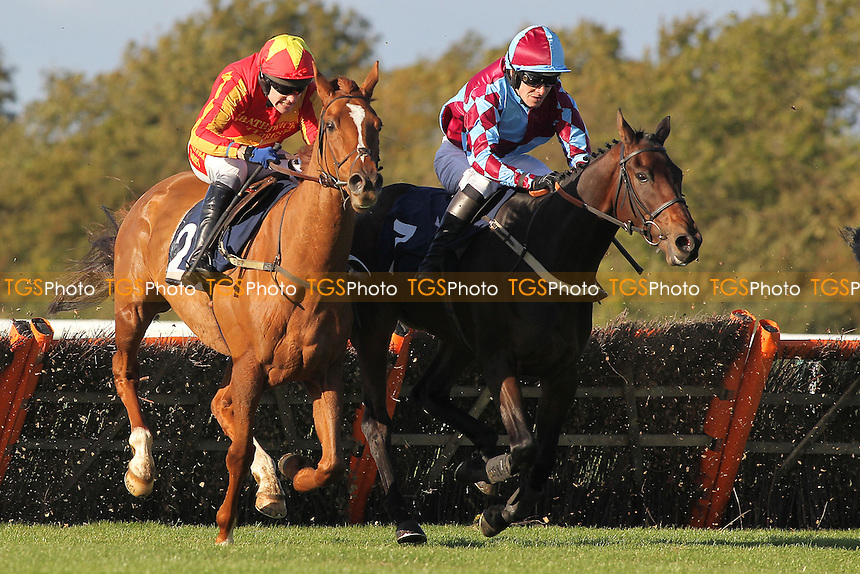 Weekend Millionair ridden by Tom Scudamore (L) and Native Colony ridden by Alex Merriam in racing action during the Cogent Cockitt Cup Novices Hurdle - Horse Racing at Huntingdon Racecourse, Cambridgeshire - 16/10/12 - MANDATORY CREDIT: Gavin Ellis/TGSPHOTO - Self billing applies where appropriate - 0845 094 6026 - contact@tgsphoto.co.uk - NO UNPAID USE