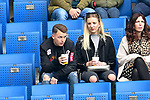 14.04.2019, PreZero Dual Arena, Sinsheim, GER, 1. FBL, TSG 1899 Hoffenheim vs. Hertha BSC Berlin, <br /> <br /> DFL REGULATIONS PROHIBIT ANY USE OF PHOTOGRAPHS AS IMAGE SEQUENCES AND/OR QUASI-VIDEO.<br /> <br /> im Bild: Auf der Tribuene Dennis Geiger (TSG Hoffenheim #8)<br /> <br /> Foto © nordphoto / Fabisch