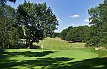 HATTEM - Hole 6, de signature hole van Hattemse Golfclub, met de beroemde boom die ook in het logo terug komt.  COPYRIGHT KOEN SUYK