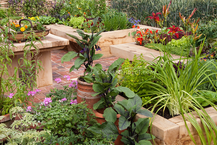 Urban/suburban vegetable & flower garden in containers and pots and raised beds on brick patio