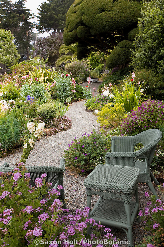 Sitting area by winding gravel pathway in colorful cottage garden. Sally Robertson Garden.