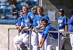 Western Nevada College Wildcats watch the action against College of Southern Idaho in Carson City, Nev., on Thursday, Feb. 26, 2015. <br /> Photo by Cathleen Allison/Nevada Photo Source