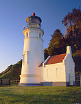 Lane County, OR <br /> Evening light on Heceta Head lighthouse under forested ridge of Heceta Head