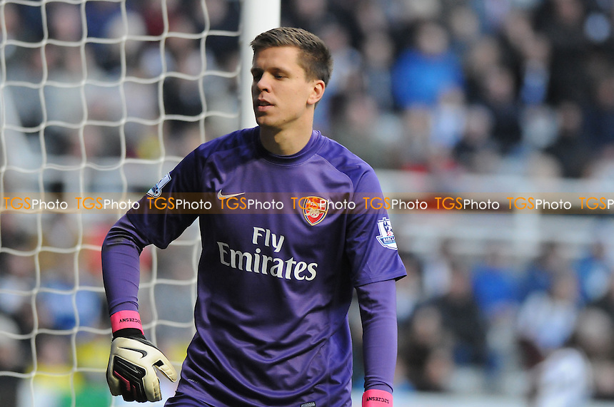 Wojciech Szczęsny of Arsenal - Newcastle United vs Arsenal - Barclays Premier League Football at St James Park, Newcastle upon Tyne - 29/12/13 - MANDATORY CREDIT: Steven White/TGSPHOTO - Self billing applies where appropriate - 0845 094 6026 - contact@tgsphoto.co.uk - NO UNPAID USE