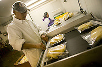 Workers package duck fatty livers at the Hudson Valley Foie Gras farm in Ferndale, USA, 16 March 2006.