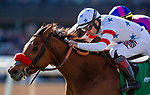 DEC 28: Lady Prancealot with Joe Bravo up wins the American Oaks Stakes at Santa Anita Park in Arcadia, California on December 28, 2019. Evers/Eclipse Sportswire/CSM