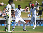 9th December 2017, Seddon Park, Hamilton, New Zealand; International Test Cricket, 2nd Test, Day 1, New Zealand versus West Indies;  Raymon Reifer appeals successfully for the wicket of Nicholls