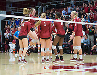 STANFORD, CA - November 3, 2018: Meghan McClure, Sidney Wilson, Jenna Gray, Tami Alade, Kathryn Plummer, Kate Formico at Maples Pavilion. No. 1 Stanford Cardinal defeated No. 15 Colorado Buffaloes 3-2.