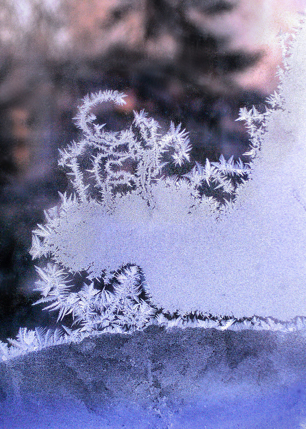 Images of ice, frost, snow and winter scenes.