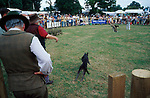 Hare coursing. <br />