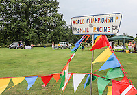 2014 World Championship Snail Racing in Congham (Norfolk)<br /> Picture description:<br /> The setting of  the 2014 World Championship Snail Racing in Congham (Norfolk)<br /> General infos:<br /> For more than 25 years the World Snail Racing Championships have been held at Congham, near King's Lynn, in Norfolk.Before snails can enter a race a sticker with a number must be put on so they can be identified. The snails race from the centre of a circle to the outside. The circle has a radius of 13 inches. The snails are put in the middle and pointed in the right direction.The  Snail Master Neil starts the races. He shouts: &quot;Ready, steady, SLOW!&quot; And off dash the snails! The Snail Master keeps the course well-watered as snails like damp conditions.Races are held on a table covered with a white cloth. Machine a circle, with braid in the middle, and then machine a similar circle 13 inches away.Owners do dress up. The World record stands at 2 minutes over the 13 inches. It was set up in 1995 by a snail called Archie. The record can only be challenged at the World Championships at Congham.Giant foreign snails are not allowedOften owners like to give their snails names like Speedy or Schumacher!<br /> Picture by Marcello Pozzetti &copy; IPS PHOTO AGENCY<br /> Cavell Barn<br /> The Common<br /> Swardeston<br /> Norwich<br /> Norfolk<br /> NR14 8DZ<br /> T 01508 571 480<br /> M 07973308835