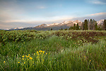 Idaho, South Central, Stanley, SNRA. A beautiful late spring morning in the Sawtooth National Recreation Area. Looking southwest towards the southern end of the Sawtooth Range of Mountains.