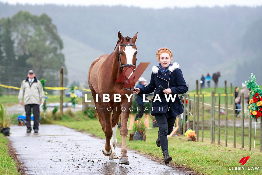 Beth Wilson with Alto et Audax during the Fiber Fresh CCI1* Championship 1st Horse Inspection at the 2017 NZL-NRM National Three Day Event Championships. National Equestrian Center, Taupo. Thursday 11 May. Copyright Photo: Libby Law Photography