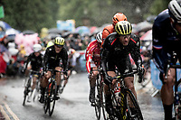 Michael Albasini (AUS/Mitchelton Scott)<br /> <br /> Elite Men Road Race from Leeds to Harrogate (shortened to 262km)<br /> 2019 UCI Road World Championships Yorkshire (GBR)<br /> <br /> ©kramon