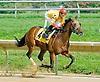 Arturius winning at Delaware Park on 9/5/12