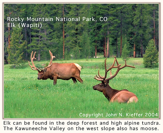"From John's 3rd book: Mastering Nature Photography."" <br />