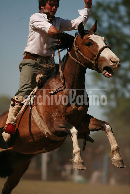 Jineteada, a festival of gaucho skills taming  wild horses, in Chacabuco, Buenos Aires province. Gauchos are the cowboys of South America. Cow herders and nomades in the past, gaucho culture is alive and strong in Argentina country side.