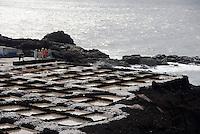 Spain, Canary Islands, La Palma, the southernmost point near Los Canarios Fuencaliente, Punta de Fuencaliente: sea salt production at world biosphere reserve of La Palma - Las Salinas de Fuencaliente
