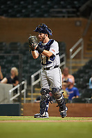 Glendale Desert Dogs catcher David Fry (31), of the Milwaukee Brewers organization, during an Arizona Fall League game against the Scottsdale Scorpions on September 20, 2019 at Salt River Fields at Talking Stick in Scottsdale, Arizona. Scottsdale defeated Glendale 3-2. (Zachary Lucy/Four Seam Images)