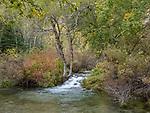 Roughlock Falls Area
