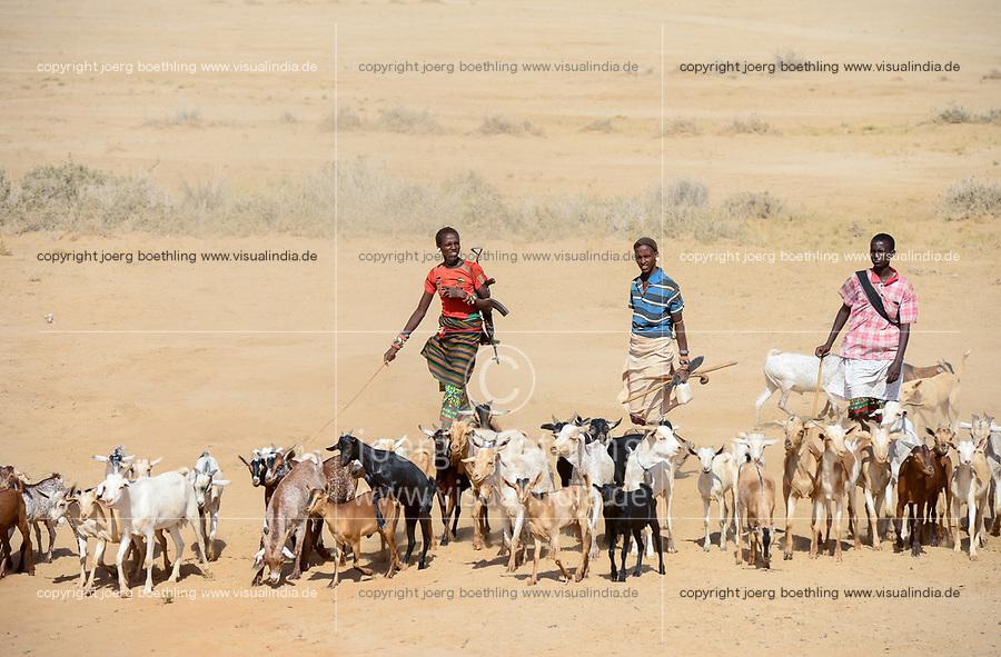 KENYA, Marsabit, Samburu pastoral tribe, with AK-47 machine gun armed shepherds with goat herd in search for water and pasture / KENIA, Marsabit, Samburu tribe, Ziegenherde zieht morgens zum Grasen und traenken, Hirte mit Kalaschnikow Maschinengewehr AK-47 zum Schutz vor cattle raids durch verfeindete Stämme
