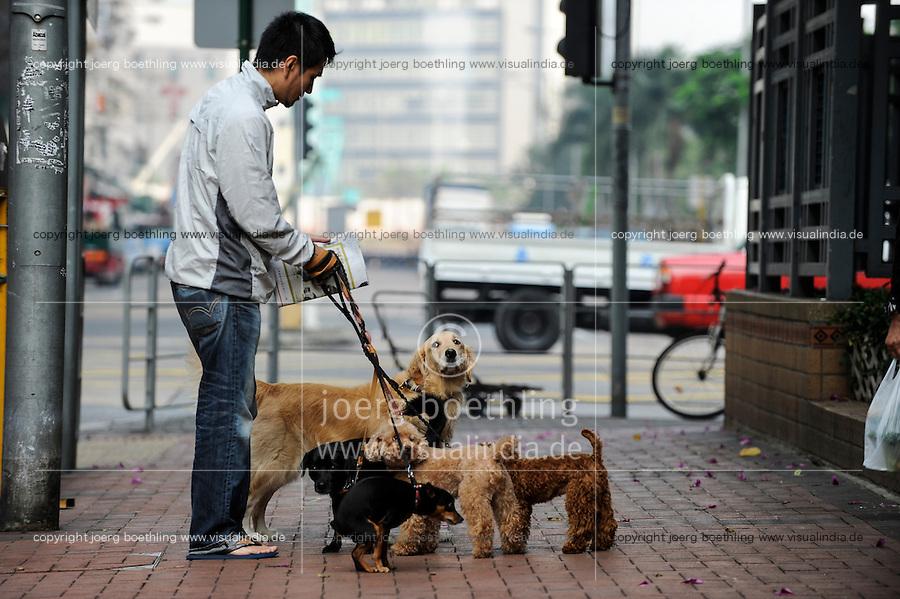 CHINA, Megacity Hong Kong, Kowloon, pedestrian with dogs
