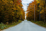 JACKSONPORT, WI - October 22, 1016:   The inviting drive to Cave Point County Park.  The Door County Fall 50 takes runners from the tip of the Door County Peninsula to Sturgeon Bay at the peak of fall colors, for the most scenic run in the nation.