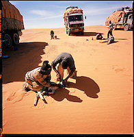 Sahara desert, Libya-Chad, November/December 2004..Every week, a convoy of 40 privately owned Libyan trucks loaded by the WFP with about 1000 metric tons of western food aid cross 2500 km of deep desert across Libya and Chad to reach more than 200 000 refugees from Darfur in camps near the Sudanese border. The convoy must carry all its food and supply for up to a month in the deep desert so each truck has a couple of goats or sheep 'passengers' on top of its load...they provide meat for about 3 days...