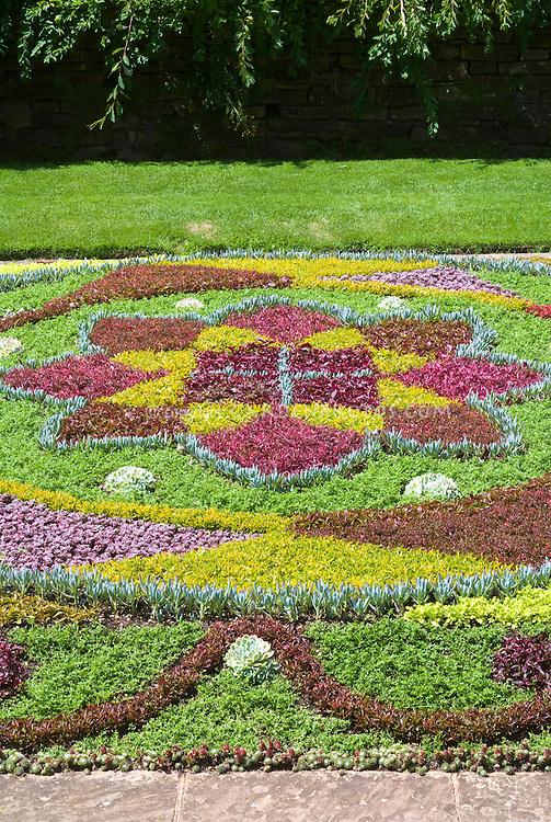 Knot garden patterns - Using succulent plants as woven groundcover, sempervivum, sedum, alternathera, for a colorful carpet