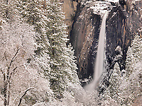 Winter Wonder, Yosemite