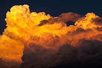 Billowing clouds soar, bathed in sunset light.  Boulder, Colorado, USA.