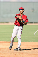 Fidel Pena - Arizona Diamondbacks - 2010 Instructional League.Photo by:  Bill Mitchell/Four Seam Images..