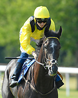 Itkaann ridden by David Probert goes down to the start of  The AJN Steelstock Cecilia Hall Handicap  during Horse Racing at Salisbury Racecourse on 9th August 2020