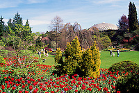 Vancouver, BC, British Columbia, Canada - Queen Elizabeth Park, Bloedel Floral Conservatory, Spring
