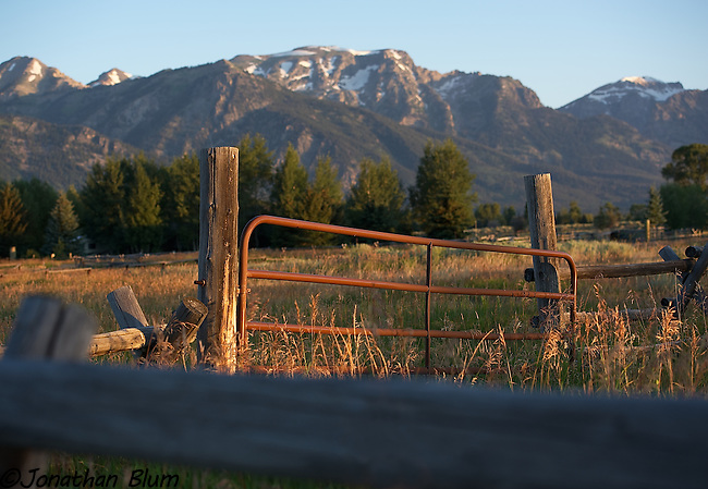 Early Morning, Jackson Hole