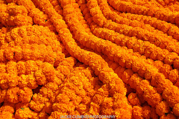 Garlands of marigolds are used in Indian Hindu homes for daily worships and ceremonies. Huge mounds are sold at the Malik Ghat flower market.