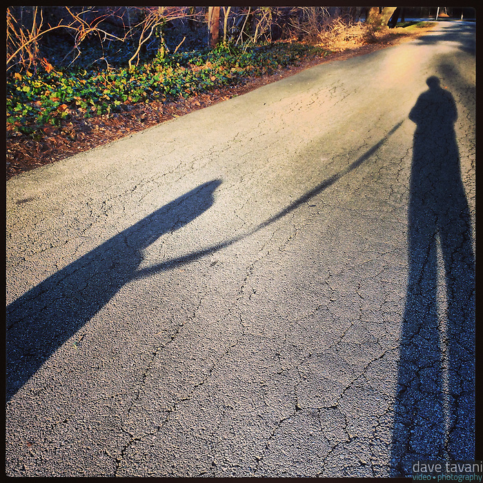The sun casts long shadows of me and Elwood as we walk along Hermit Lane in the Roxborough section of Philadelphia January 20, 2013.