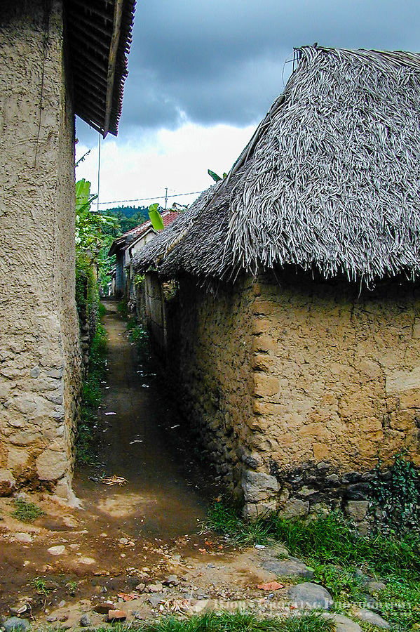 Bali, Karangasem, Tenganan. A traditional Bali Aga village. A narrow path between the buildings, most of the houses have thatched roofs.