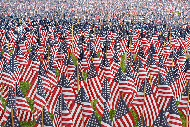 Thousands of small U.S. flags.