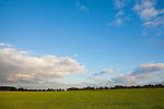 Europa, DEU, Deutschland, Nordrhein Westfalen, NRW, Rheinland, Niederrhein, Rheurdt, Schaephuysener Hoehen, Agrarlandschaft, Himmel, Wolken, Bewoelkung, Kategorien und Themen, Natur, Umwelt, Landschaft, Jahreszeiten, Stimmungen, Landschaftsfotografie, Landschaften, Landschaftsphoto, Landschaftsphotographie, Wetter, Himmel, Wolken, Wolkenkunde, Wetterbeobachtung, Wetterelemente, Wetterlage, Wetterkunde, Witterung, Witterungsbedingungen, Wettererscheinungen, Meteorologie, Bauernregeln, Wettervorhersage, Wolkenfotografie, Wetterphaenomene, Wolkenklassifikation, Wolkenbilder, Wolkenfoto....[Fuer die Nutzung gelten die jeweils gueltigen Allgemeinen Liefer-und Geschaeftsbedingungen. Nutzung nur gegen Verwendungsmeldung und Nachweis. Download der AGB unter http://www.image-box.com oder werden auf Anfrage zugesendet. Freigabe ist vorher erforderlich. Jede Nutzung des Fotos ist honorarpflichtig gemaess derzeit gueltiger MFM Liste - Kontakt, Uwe Schmid-Fotografie, Duisburg, Tel. (+49).2065.677997, ..archiv@image-box.com, www.image-box.com]