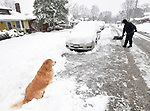 Wayne Cormier of Belleville clears snow from around his neighbor's car on South Virginia Street as his dog, Coco Chanel, sits and watches him work on Saturday morning January 12, 2019. People were busy digging out -- and some were having fun -- after a major snowstorm hit the St. Louis metropolitan region. <br /> Photo by Tim Vizer