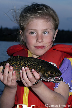 Fishing summer brook trout