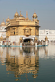 Amritsar, Punjab, India. View of the Golden Temple across the lake.